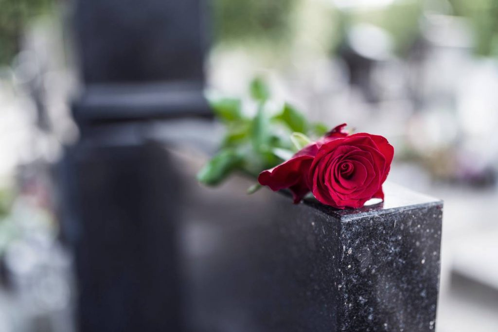 rose on grave stone